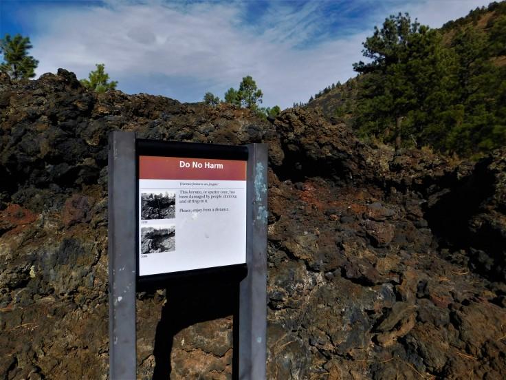 Flagstaff Lava Field Travel Scout (2)