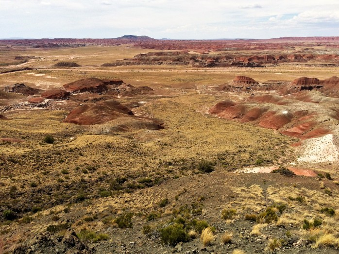Petrified Forest National Park Kate Swavely Travel Scout
