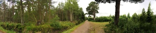 culloden-scotland2