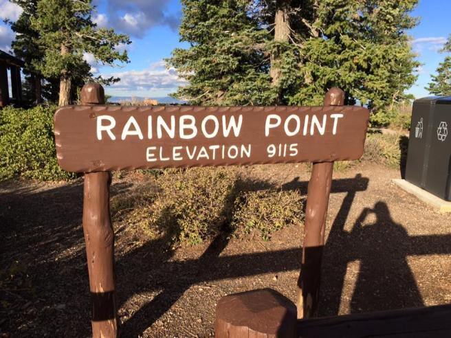 rainbow point