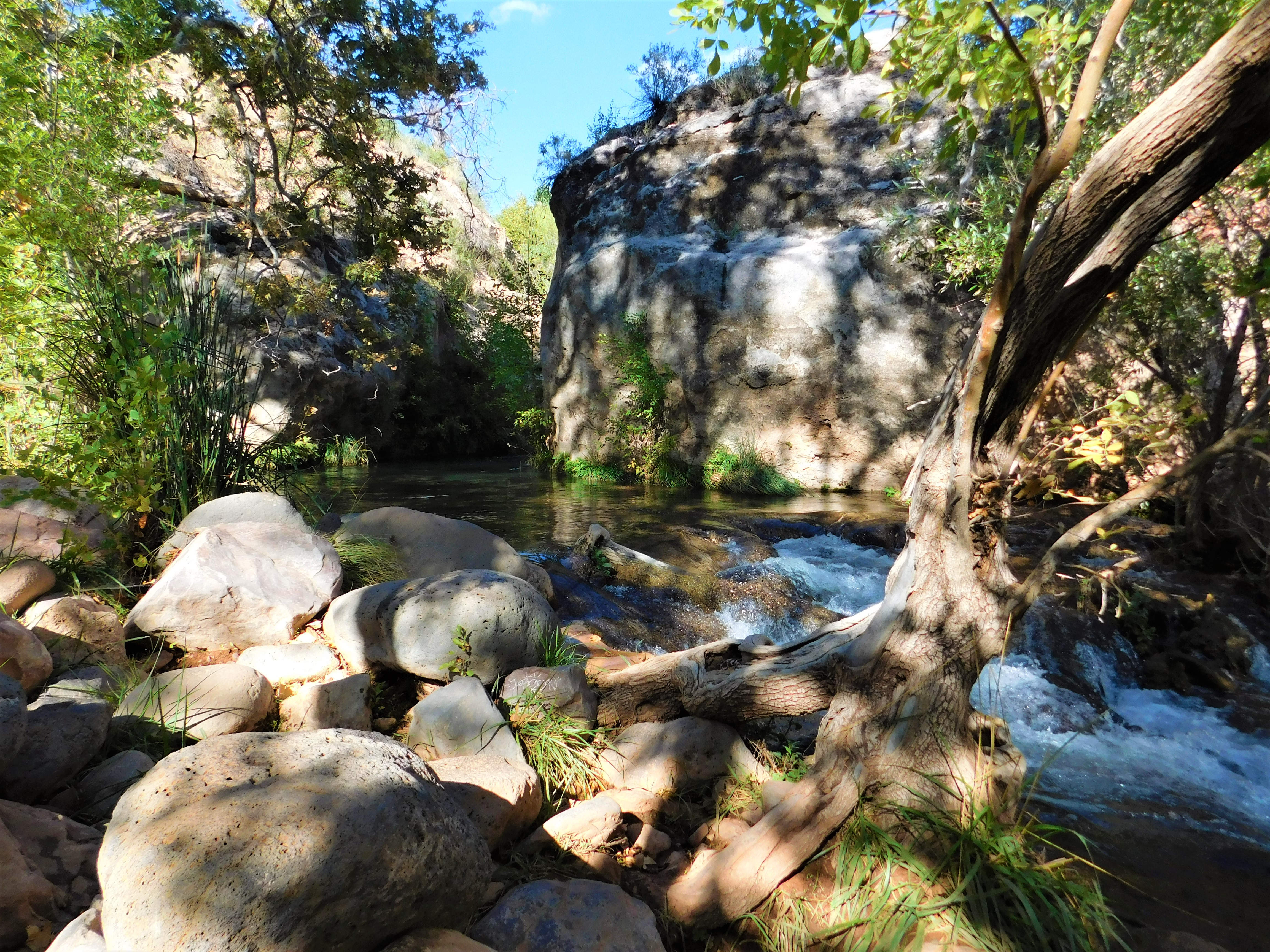 Fossil Creek Kate Swavely Travel Scout